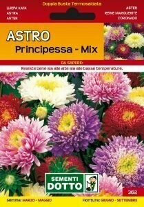 ASTRO PRINCIPESSA - Aster - busta semi MIX