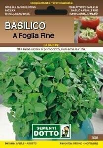 BASILICO GRECO / A FOGLIA FINE - Ocimum basilicum - busta semi