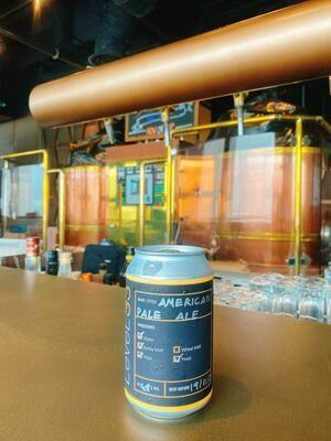 LeVeL33 American Pale Ale