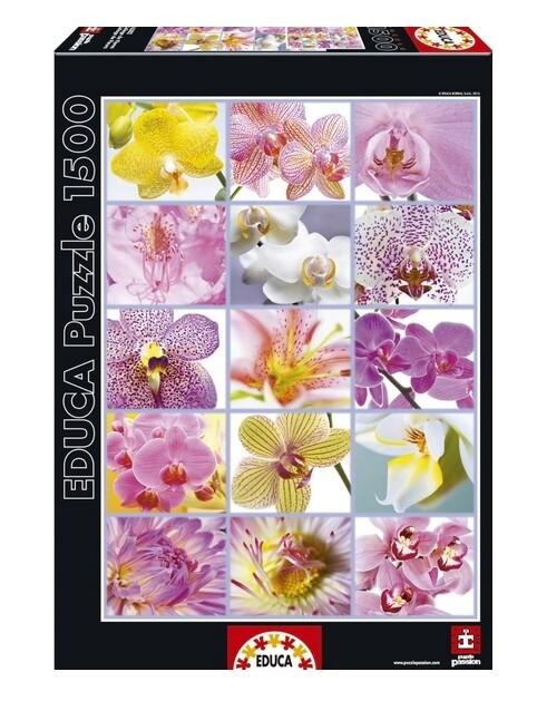 PUZZLE 1500 pcs - Colagem de Flores - EDUCA