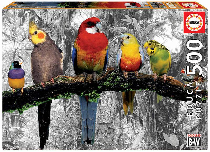 PUZZLE 500 pcs Pássaros na Selva - EDUCA