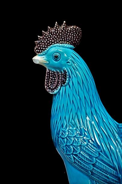 Gallo de porcelana China turquesa