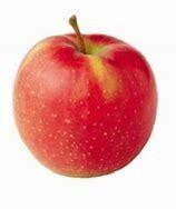Nicoter Apple 10kg Box