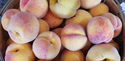 Peaches (4 pack)