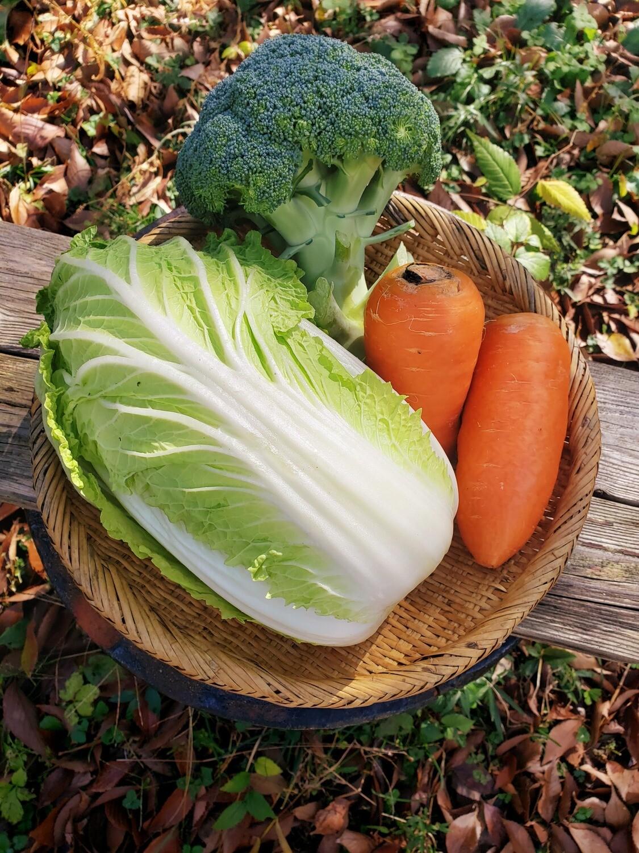 チリンチリン三鷹農家定期便 野菜詰め合わせ(水・金・土限定)