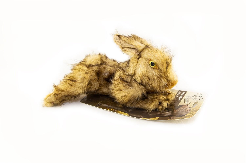 AFP Rabbit