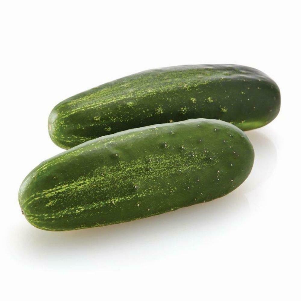 Cucumbers White Spine