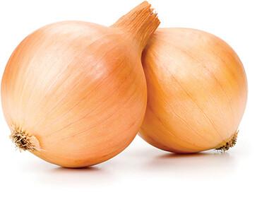 Onions Spanish