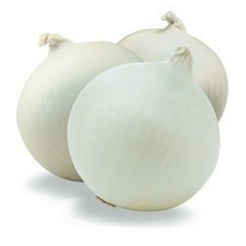 Onions White Spanish