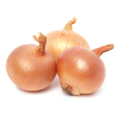 Onions Bagged
