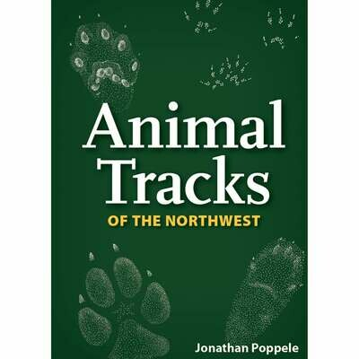 Animal Tracks Playing Cards