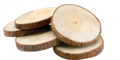 Coasters. Salvaged Tree Branch, Set of 6
