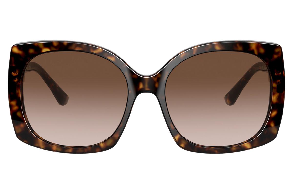 Dolce & Gabbana DG4385 502/13 58