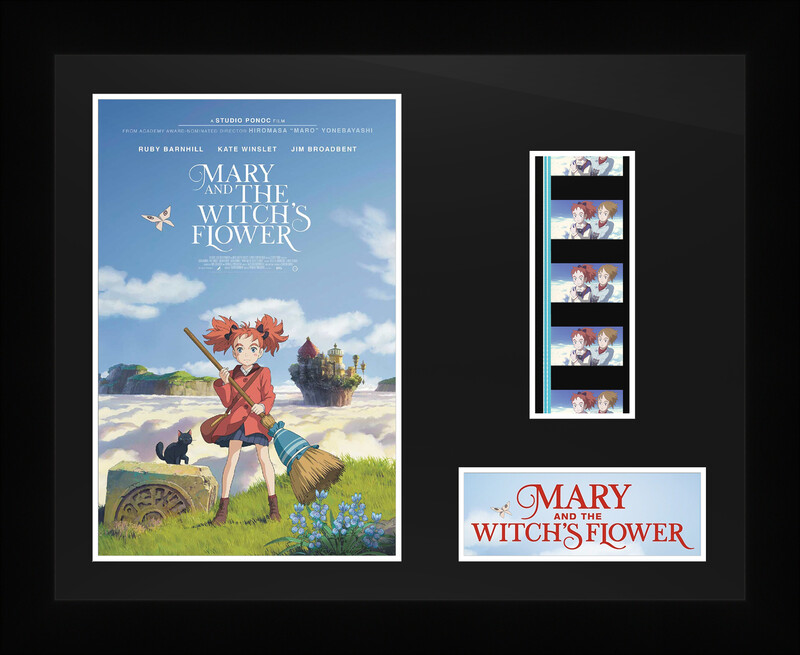 Mary and the Witch Flower