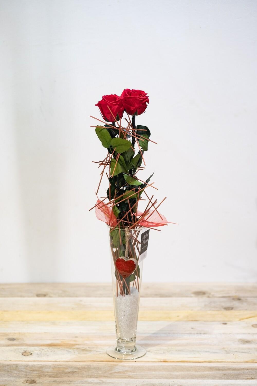 Duo de roses éternelles