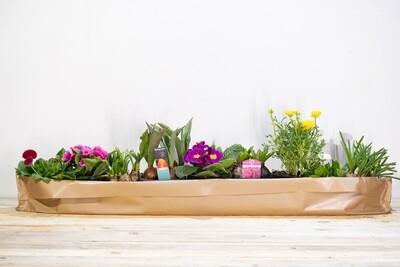 1 mètre de plantes