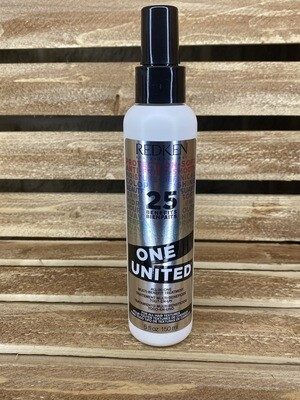 Redken One United 25 Benefits