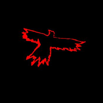The Crow - (Mens/Ladies Shirt)