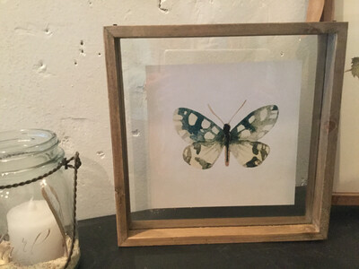 K&K Framed Butterfly Print