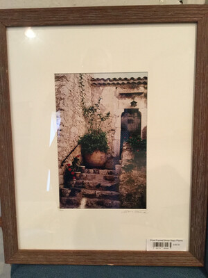 Print Framed Stone Steps Plants