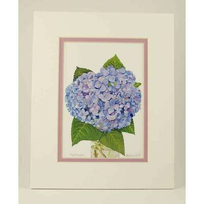 "Hydrangea – Double Matted ""Hand-Signed Print"" by Stephanie Scott"