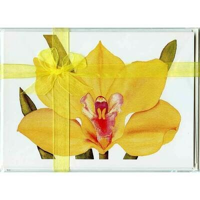Cymbidium Orchid – Floral Notecard 4 Card Gift Pack by Stephanie Scott