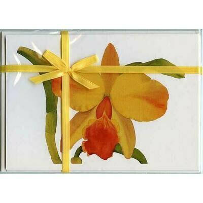 Cattleya Hazel Boyd – Floral Notecard 4 Card Gift Pack by Stephanie Scott