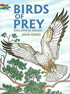 Birds of Prey Coloring Book by John Green (Paperback)
