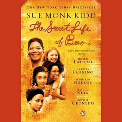 The Secret Life of Bees by Sue Monk Kidd (Paperback) USED