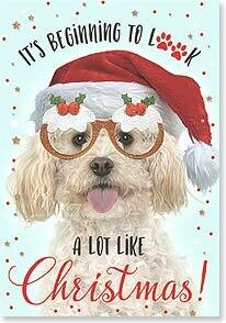 Christmas Card: Have fun getting into the spirit of Christmas!