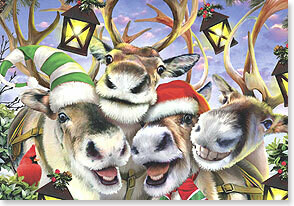 Christmas Card: Smile...it's Christmas!