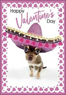 Valentine's Day Card: You are mucho loved!