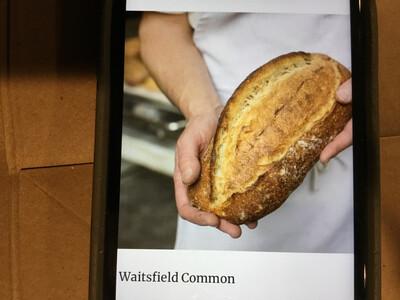 Bread - Waitsfield Common (Red Hen Bakery)