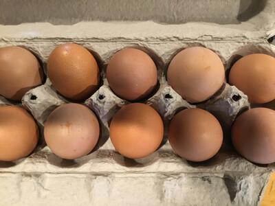 Eggs (Tamarack Hollow Farm)