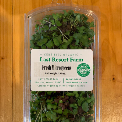 Microgreens - Last Resort Farm