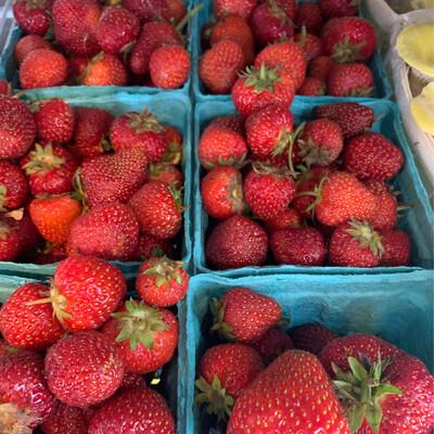 Organic Strawberries - Pint (Adam's Berry Farm)