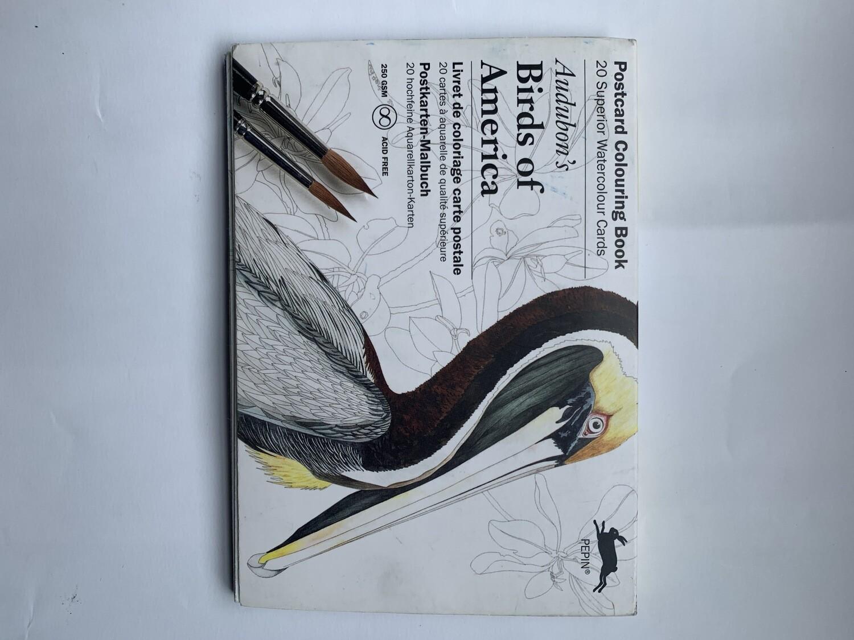 Audubon Book of Birds Watercolor Postcards