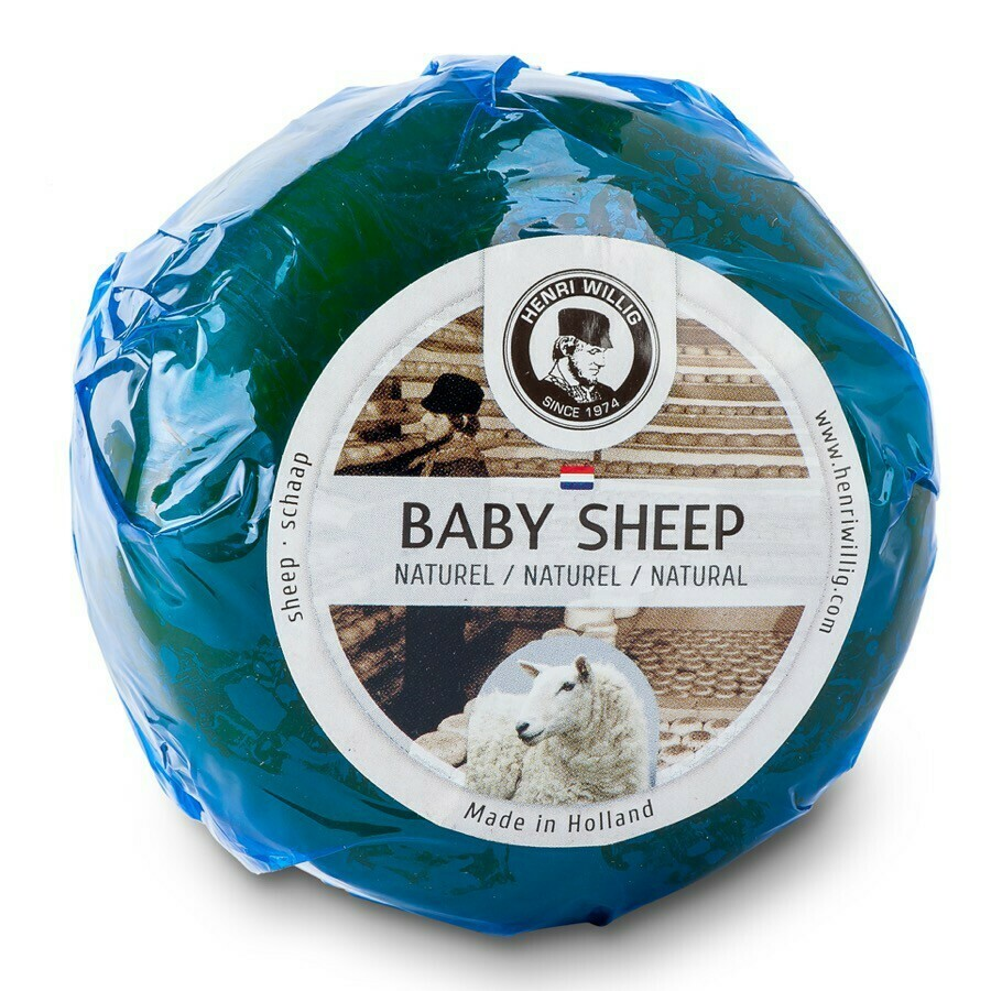 Queso Baby Sheep