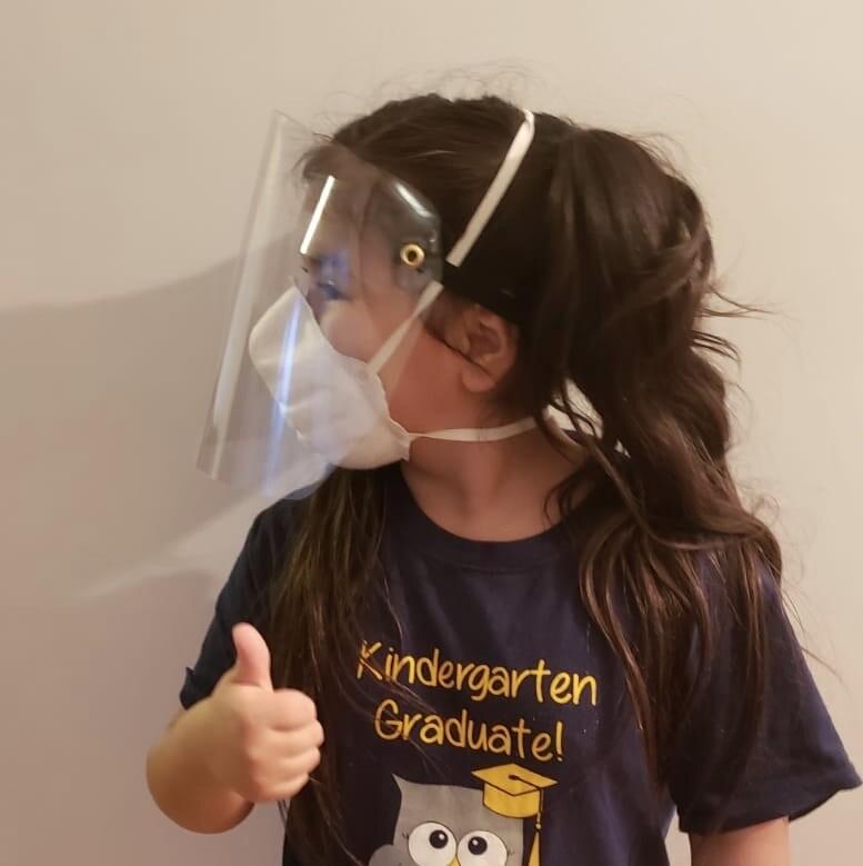 2 Pcs  Plastic Face Shield Protection