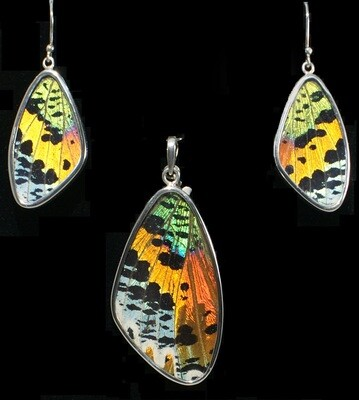 Butterfly Wing Necklace and Earrings