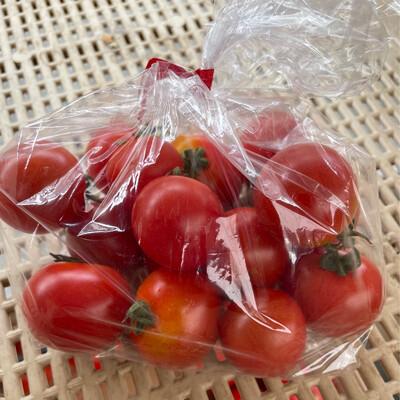 Cherry Tomatoes Small