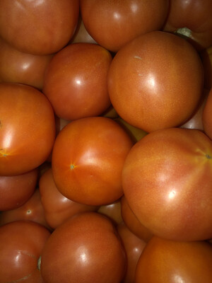 Beefsteak Tomatoes (6)