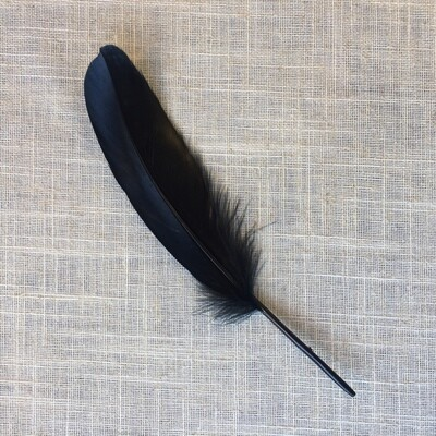 Smudge Feather 7- 8""
