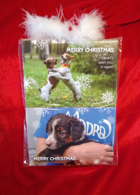 10 Pack MADRA Christmas Cards