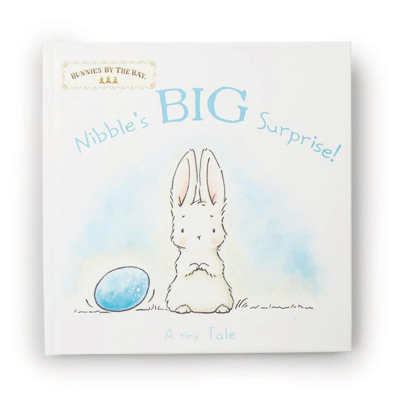 BBB Nibble Surprise Book