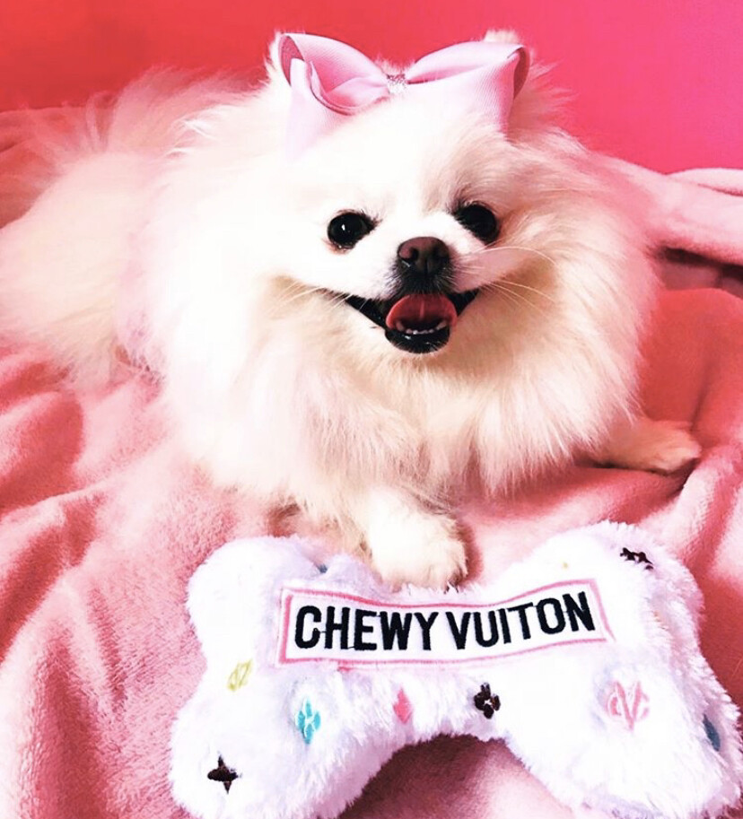 HDD Chewy Vuitton Bone White Small