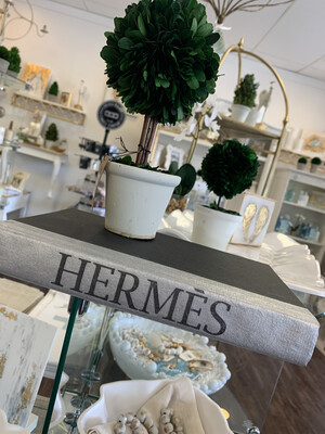 Boutique Book Silver Hermes