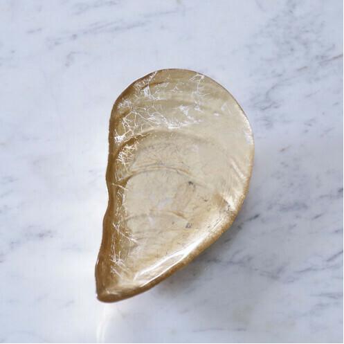 Beatriz Ball Oyster Shell Medium