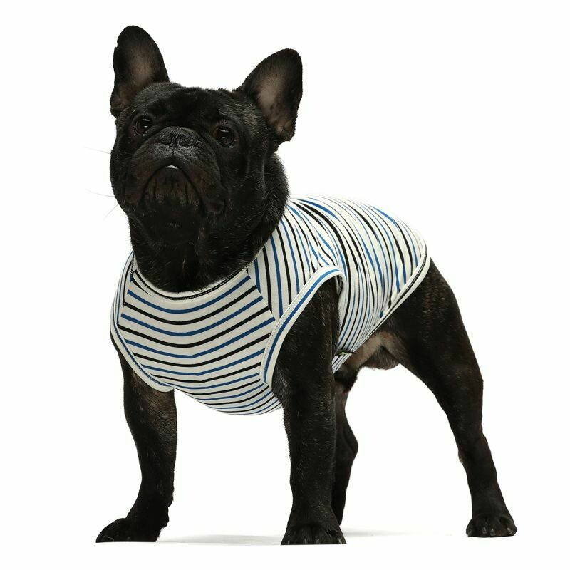 FW Dog Clothes Navy Stripe XS