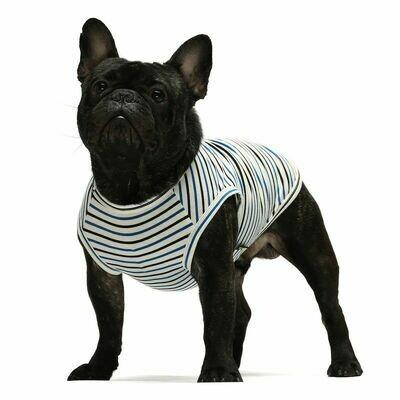 FW Dog Clothes Navy Stripe XS